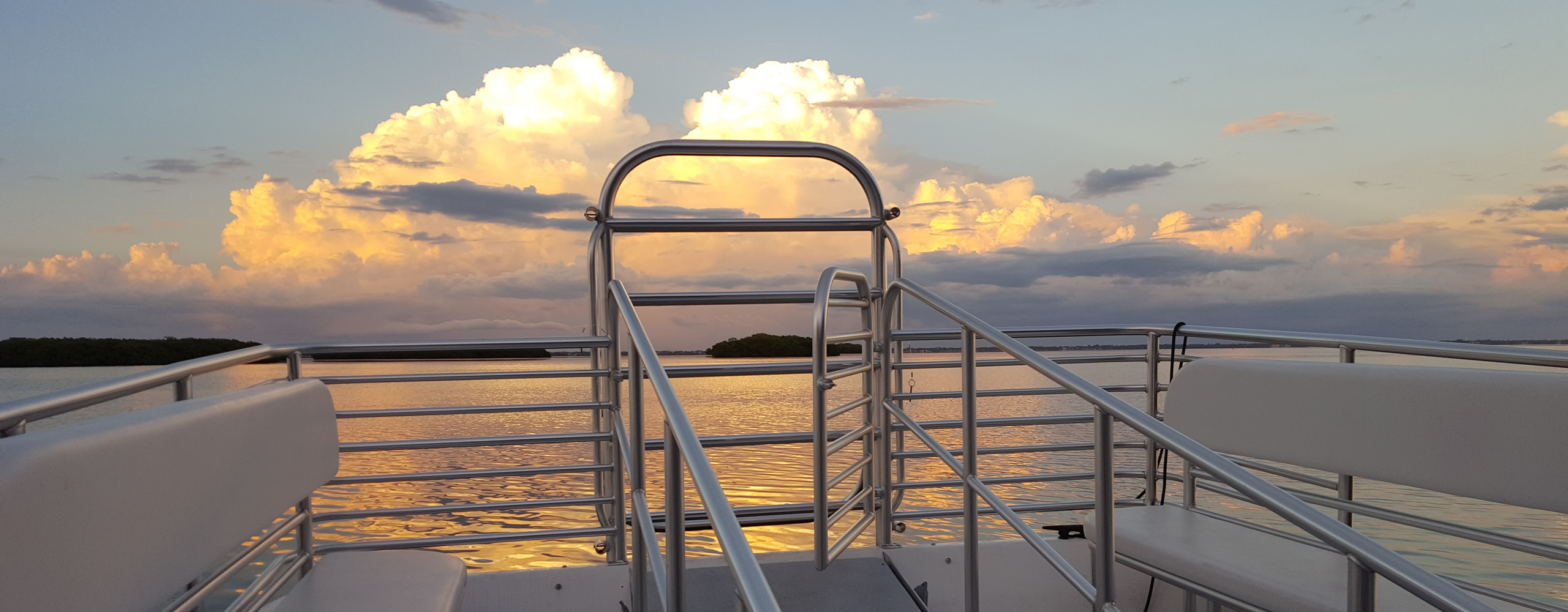 Sunset, dolphin and private cruises